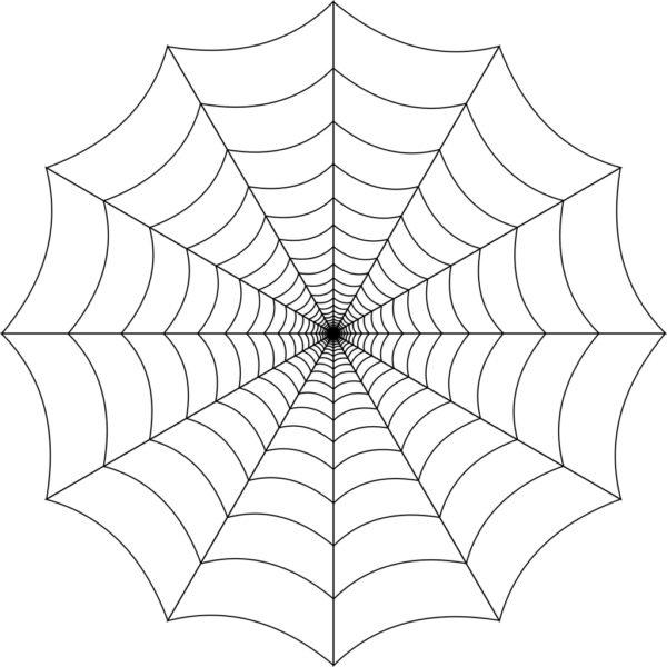 蜘蛛の巣 幸せを引き寄せる