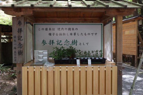 大神神社 参拝記念樹