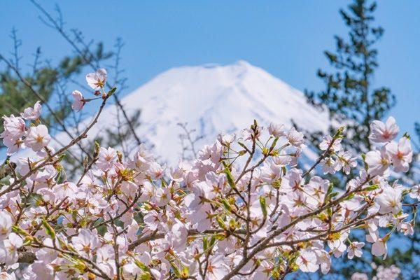 日本は美しい!一度は見ておきたい【日本の名所】ランキング15!