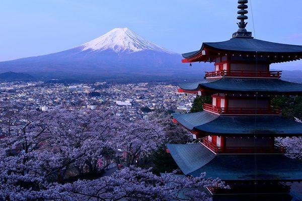 新倉山浅間公園忠霊塔から夜明けの桜と富士山