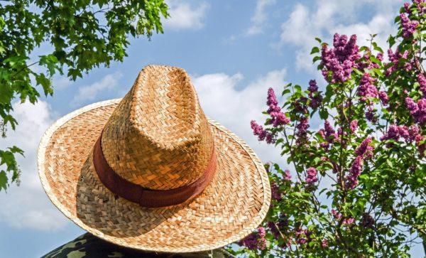 敏感肌に優しい日焼け止め7選!この夏しっかり紫外線カット!!